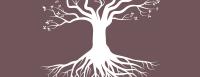 namoterapias-logo